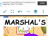 Marshall's World
