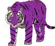 Qure the Tiger
