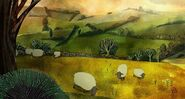 Sheep, Domestic (Song of the Sea)