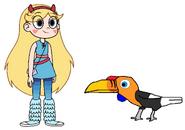 Star meets Knobbed Hornbill