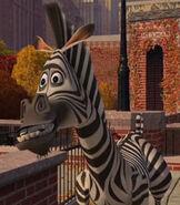 Marty in Madagascar