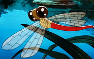 Simba the king lion dragonfly
