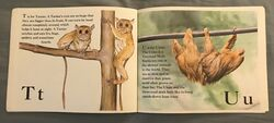 The Furry Animal Alphabet Book (12).jpeg