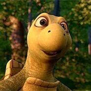 Verne Turtle