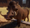 Warthog, Southern (Planet Zoo)