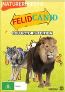 FelidCanid Poster