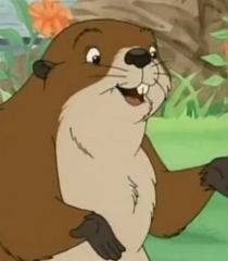 Beaver (Franklin)