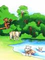 Jumpstart firstgrade congo safari chimpanzee elephant hippopotamus