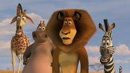 Madagascar2-disneyscreencaps.com-2356