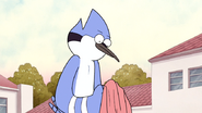 Mordecai Looks at the Sweater One Last Time