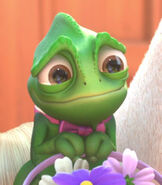 Pascal in Tangled Ever After