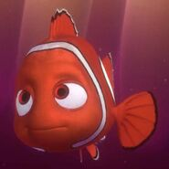 Profile - Nemo
