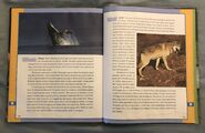 Scholastic Encyclopedia Of Animals (58)