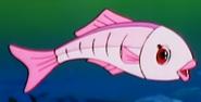 Simba the king lion pink fish