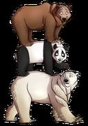 We Bare Realistic Bears