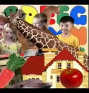 Cookoo Concertos Giraffe