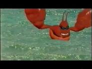 DKTV Lobster
