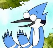 Mordecai the Blue Jay-0