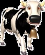 Vaca-zenon