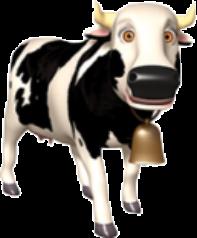 Lola the Cow
