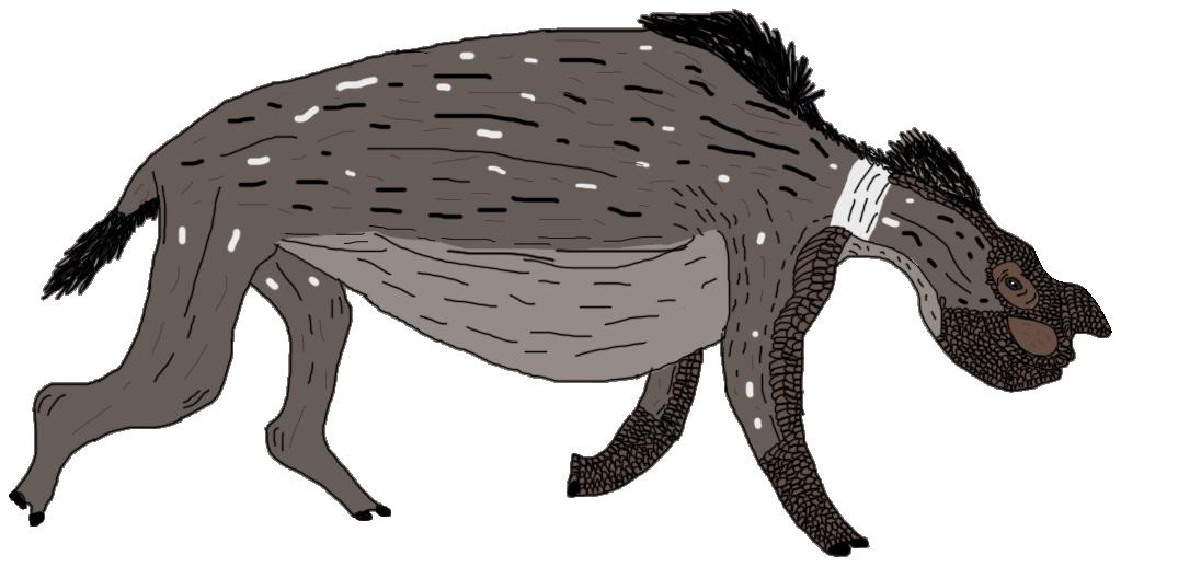 All Todays Rhinoceros