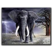 Elephants In the Storm Caused by the Wickedness of Sinful Men