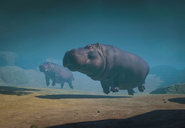 Hippopotamus-planet-zoo