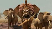 Madagascar2-disneyscreencaps.com-7383