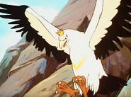 Simba the king lion white eagle
