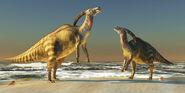 Two Parasaurolophuses