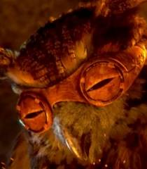 Bubo (Legend of the Guardians: The Owls of Ga'Hoole)