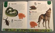 Deadly Creatures Dictionary (25)