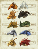 Dungeons and Dragons - Dragons Chromatic and Metallic by qqwweerr90