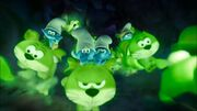 Glow Bunnies.jpg