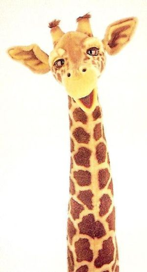 Alexis the Giraffe