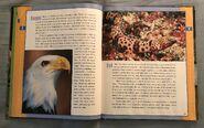 Scholastic Encyclopedia Of Animals (17)