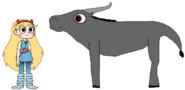 Star meets Wild Water Buffalo