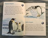 Animals of the Polar Regions (2)