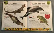 Endangered Animals Dictionary (15)