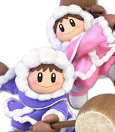 Ice Climbers in Super Smash Bros. Ultimate