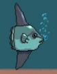 MSB Sunfish