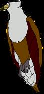 Mama Eagle thewildlifeland