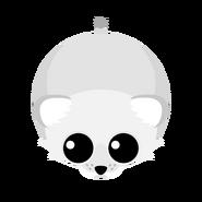 Mopeio White Lion Cub