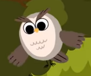 Owl walking in the forest super simple songs