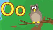 TFL Owl