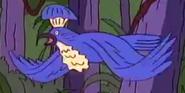 TWT Umbrellabird