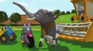 Tractor Tom Hollywoodedge, Elephant Trumpeting PE024801