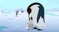 Wild Kratts Emperor Penguin