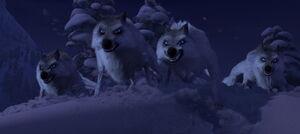Wolves Frozen.jpg