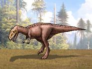 Dm ceratosaurus